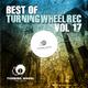 Various Artists - Best of Turning Wheel Rec, Vol. 17