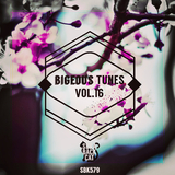 Bigeous Tunes, Vol. 16 by Various Artists mp3 download