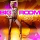 Various Artists - Bigroom Club-Hits 2k15