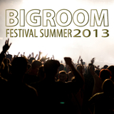 Bigroom Festival Summer 2013 by Various Artists mp3 download