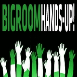 Bigroom Hands-Up! by Various Artists mp3 download