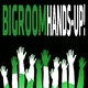 Various Artists Bigroom Hands-Up!