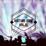 Bigtime EDM, Vol. 15 by Various Artists mp3 download