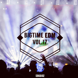 Bigtime EDM, Vol. 17 by Various Artists mp3 download