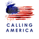 Various Artists - Calling America: Finest New Electronic Music