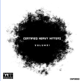 Certified Heavy Hitters, Vol. 1 by Various Artists mp3 download