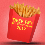 Deep Fry: Best of Deep House 2017 by Various Artists mp3 download