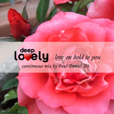 Deep Lovely: Love on Hold to You by Various Artists mp3 download