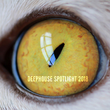 Deephouse Spotlight 2018 by Various Artists mp3 download