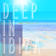 Various Artists Deep in Ibiza
