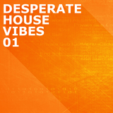 Desperate House Vibes, Vol. 1 by Various Artists mp3 download