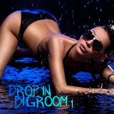 Drop in Bigroom, Vol. 1 by Various Artists mp3 download