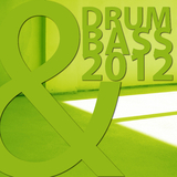Drum & Bass 2012 by Various Artists mp3 download