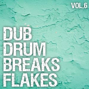 Various Artists - Dub Drum Breaks Flakes, Vol. 6 (Breakdrum Recordsings)