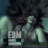 EDM Dance Sensation by Various Artists mp3 download