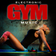 Various Artists - Electronic Gym Music