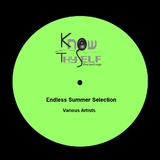 Endless Summer Selection by Various Artists mp3 download