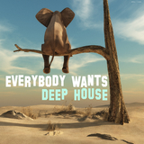 Everybody Wants Deep House by Various Artists mp3 download