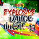 Various Artists - Explosive Dance Music 13