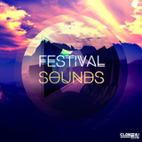 Festival Sounds by Various Artists mp3 download