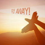 Fly Away! by Various Artists mp3 download
