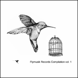 Flymusik Records Compilation, Vol. 1 by Various Artists mp3 download