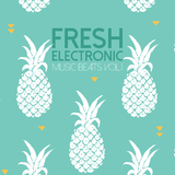 Fresh Electronic Music Beats, Vol. 2 by Various Artists mp3 download