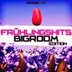 Various Artists - Frühlingshits - Bigroom Edition