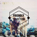 Friendly Selection, Vol. 13 by Various Artists mp3 download