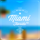Various Artists Greetings from Miami, Florida, Usa
