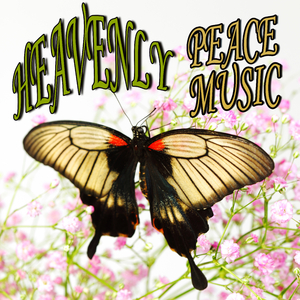 Various Artists - Heavenly Peace Music (Blue Lagoon)