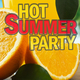Various Artists - Hot Summer Party