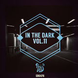 In the Dark, Vol. 11 by Various Artists mp3 download