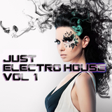 Just Electro House Vol. 1 by Various Artists mp3 download
