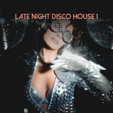 Late Night Disco House, Vol. 1 by Various Artists mp3 download