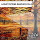 Various Artists - Luxury Autumn Sampler, Vol.2