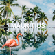 Various Artists - Mauritius, Chillout Lounge Music Deluxe