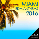 Miami EDM Anthems 2016 by Various Artists mp3 download