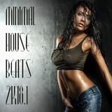 Minimal House Beats 2k18, Vol. 1 by Various Artists mp3 downloads