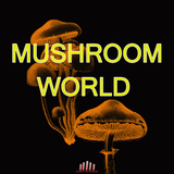 Mushroom World by Various Artists mp3 download
