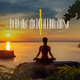 Various Artists - New Age Meditation Music, Vol. 1