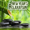New Year''s Relaxation by Ayurveda Garden mp3 downloads