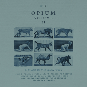 Various Artists - Opium Vol.2: a Phase In The Slow Walk  (Avantroots)