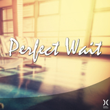 Perfect Wait by Various Artists mp3 download