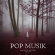 Various Artists - Pop Music