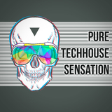 Pure Techhouse Sensation by Various Artists mp3 download