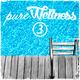 Various Artists - Pure Wellness 3