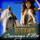 Various Artists - Reiter Hits - Coversongs Edition