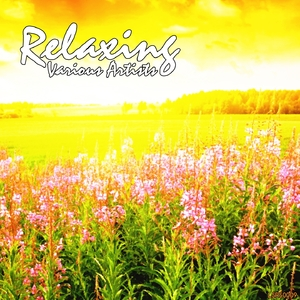 Various Artists - Relaxing (Left Side Right Side)