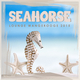 Various Artists - Seahorse Lounge Wangerooge 2015